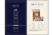 颐高人才公寓G1户型