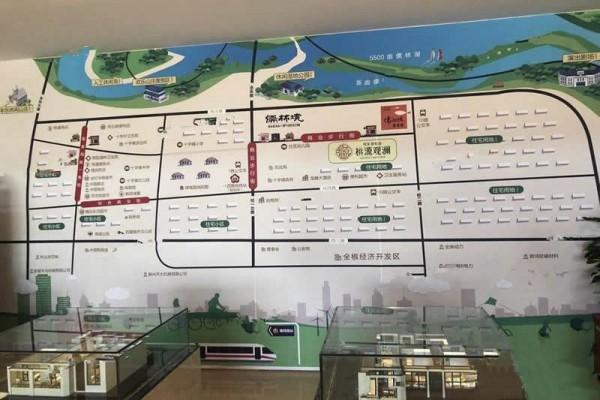 桃园观澜区位图