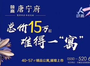 【颐高唐宁府】颐高人才公寓新品开售啦!