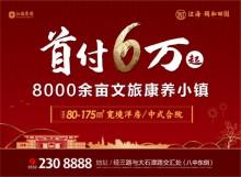 首付6万,享80000余亩江海康养小镇!