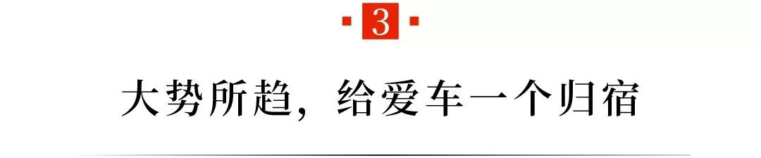 16.webp.jpg
